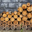 Pile of firewood — Stock Photo #6777385
