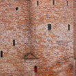 Close-up wall of fortification castle — Stock Photo #9409666