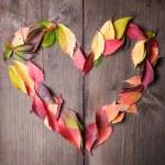 I love autumn — Stock Photo #13673704