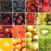 Various fruits berries — Stock Photo