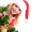 Christmas santa face — Stock Photo #15653537