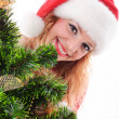 Christmas santa face — Stock Photo #15653583