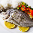 Baked dorado fish — Stock Photo