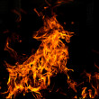 Royalty-Free Stock Photo: Fire goat