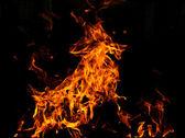Fire goat — Stock Photo