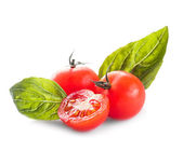 Tomate et basilic — Photo