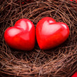 Nest with hearts - Foto de Stock