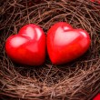 Nest with hearts - Stockfoto