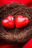 Nest with hearts — Stock Photo