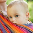Stock Photo: Baby in sling