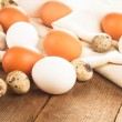 Eggs on textile - Stock Photo