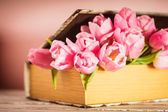 Tulips in book — Stock Photo