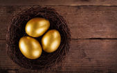 Golden eggs in the nest — Stock Photo