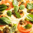 Royalty-Free Stock Photo: Pizza with tomatoes and basil