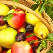 Apples and pears on grass — Stock Photo #23884909