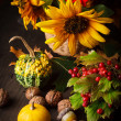 Still life in colours of autumn - Stock Photo