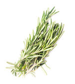 Rosemary leaf isolated — Stock Photo