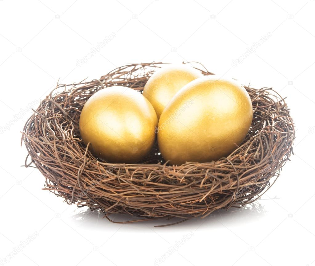 Golden eggs in nest — Stock Photo © oksixx #24424549