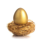 Golden egg in nest — ストック写真