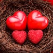 Royalty-Free Stock Photo: Nest with hearts