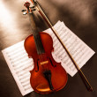 Violin and notes — Stock Photo #25065903