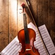 Violin and notes — Stock Photo