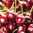 Sweet cherry background — Foto de Stock
