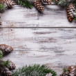 White shabby Christmas border with snow covered pinecones — Stock Photo #30872331