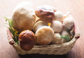 Ceps in the basket — Stock Photo