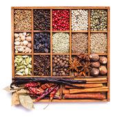 Spice set isolated — Stock Photo