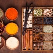 Spice set — Stock fotografie