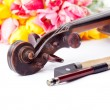 Black old violin — Stock Photo #37664761