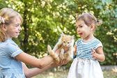 Girl play with kitten — Stock Photo