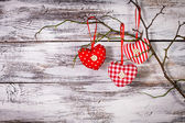 Hearts on the branch — Stock Photo