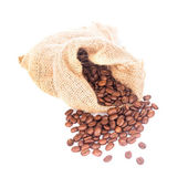 Coffe beans isolated — Stock Photo