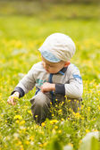 Boy plays with flowers — Stock Photo