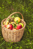 Apples and pears on the grass — Stock Photo