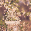 Bird cage - romantic decor — Stock Photo #45035163
