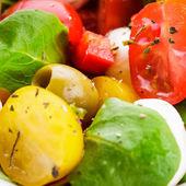 Новый салат — Стоковое фото