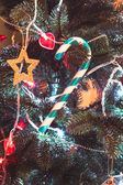Lolipop on the Cristmas tree — Stock fotografie