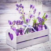 Lavendel in flessen decor — Stockfoto