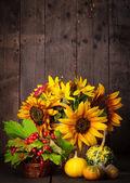 Bodegón con colores de otoño — Foto de Stock