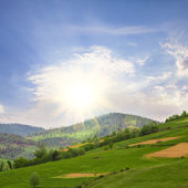 Fields in mountains — Stock Photo