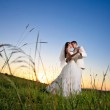 Wedding sunset — Stock Photo #6055734