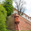 Royal castle in Wawel, Krakow - Stock Photo