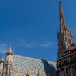 St. Stephan cathedral in center of Vienna, Austria — Stock Photo #12341872