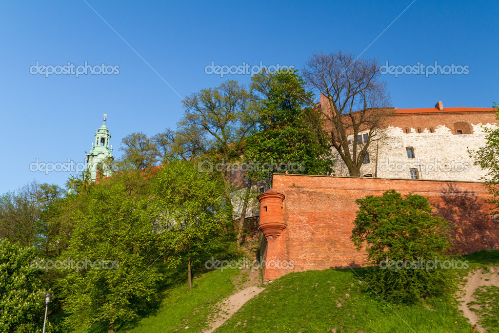 Royal castle in Wawel, Krarow — Stock Photo #12739785