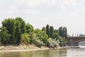 Margaret island, Budapest, Hungary — Stock Photo