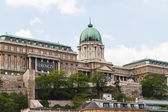 Historic Royal Palace in Budapest — Foto Stock