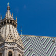 St. Stephan cathedral in center of Vienna, Austria — Foto Stock